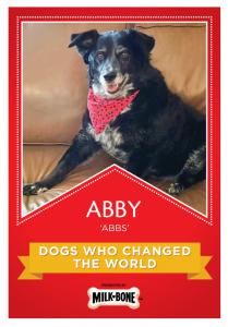 Abby_1(1)