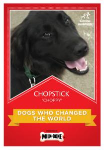 Chopstick_1