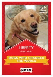 Liberty_1